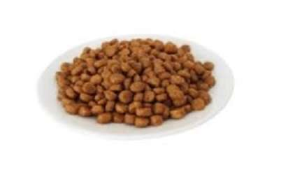 Grain-Free Diets Associated with Heart Disease in Dogs